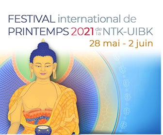 Spring Festival 2021 Banners_FRENCH_Extra-rectangle-336x280 - Copie